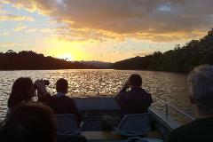 Daintree River Dusk Cruse