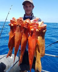Half Day Private Fishing or Snorkel Charter