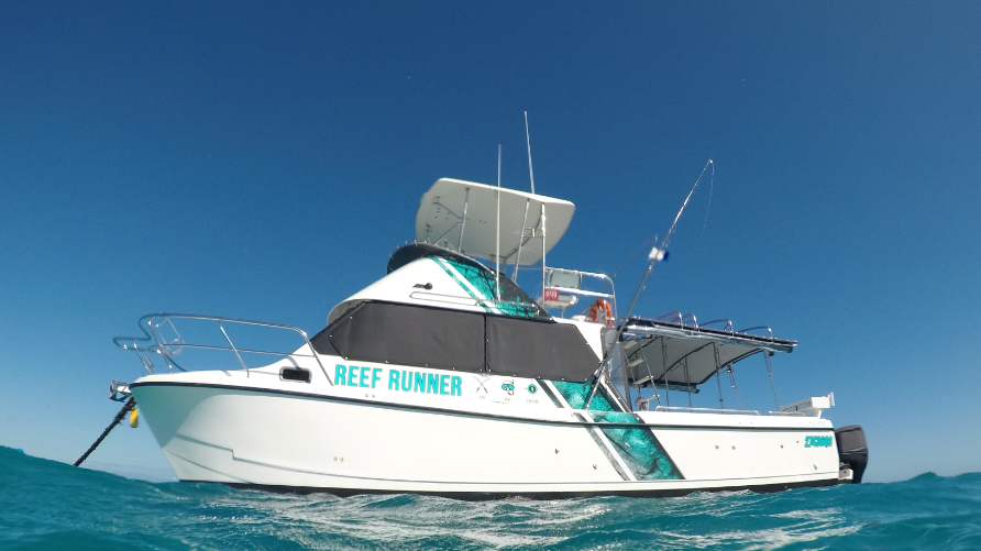Full Day Fishing, Snorkelling & Cook Your Catch Private Charter (Reef Runner)