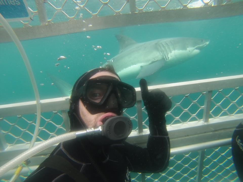 Winter Shark Cage Dive Adult - Experienced Diver