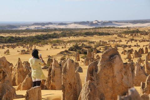 Pinnacles and Sandboarding Including Yanchep National Park 1 Day Tour
