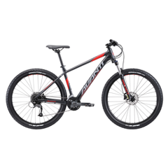 2019 Avanti Montari 3 Hard Tail mountain bike. Sizes Small to Xtra Large available.