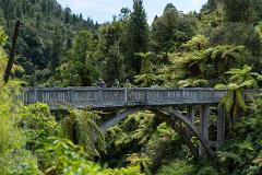 Bridge to Nowhere ( MTB Rental, Shuttle & Jet Boat)