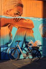 3 Hour Street Art Biking Tour in Napier and Ahuriri