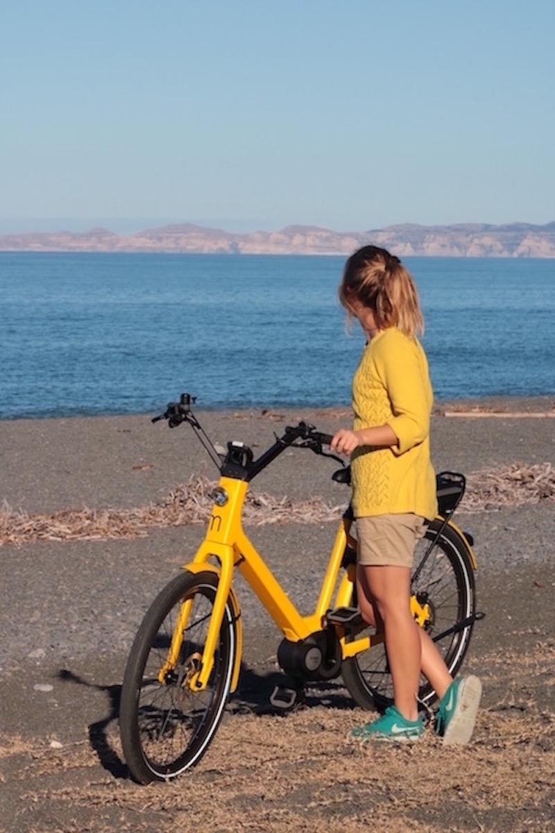 Guide Electric Bike Tour of Napier