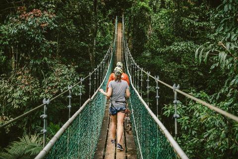 Zip_suspension_bridge