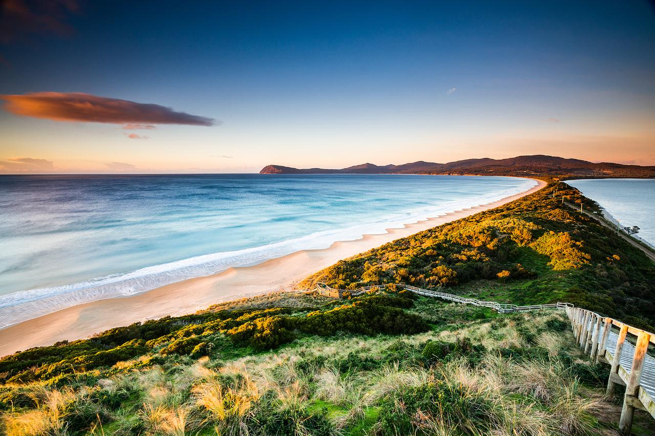 Shore Excursion - Bruny Island day tour