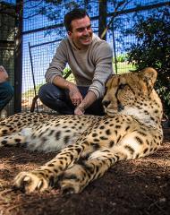 Meet-a-Cheetah