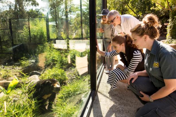 20th Birthday Zoo Tour