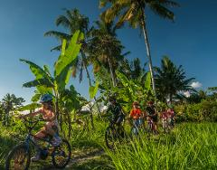 Bali Eco & Educational Cycling Tour