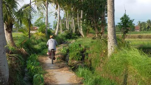 Ubud Eco Fun Orientation Half Day Cycling Tour