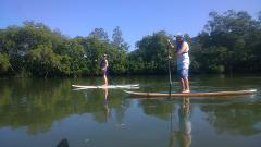 Guided Kayak and Stand Up Paddle Board Tour