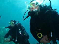 Guided Boat Dive @ Boarfish Reef (10m) on Sunday 24th of January at 2:00pm
