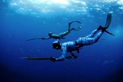 Spearfishing Experience - Full Day