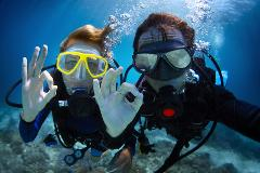 Spring Diving Day: Saturday 12th September (9AM SESSION)