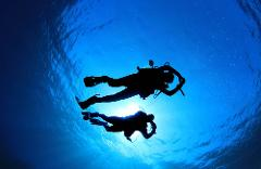 Guided Boat Dive @ Twin Towers on Australia Day @ 9:00am