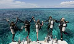 Guided Boat Dive @ Boarfish Reef (10m): Sunday 17th of January @ 2:30pm