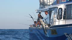 Deep Sea Fishing Charter & Accommodation