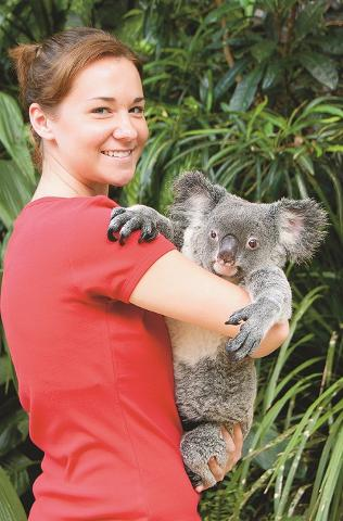 Visit Kuranda - Koala Gardens with Koala photo Optional Extra