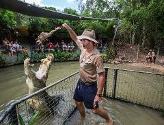 GTS: Kuranda by Train, Skyrail and Hartley's Crocodile Adventures