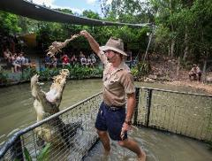 Half Day Hartley's Croc Park & Transfers | 8:30am Departure
