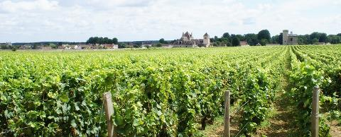 Burgundy Wine & Medieval Tour