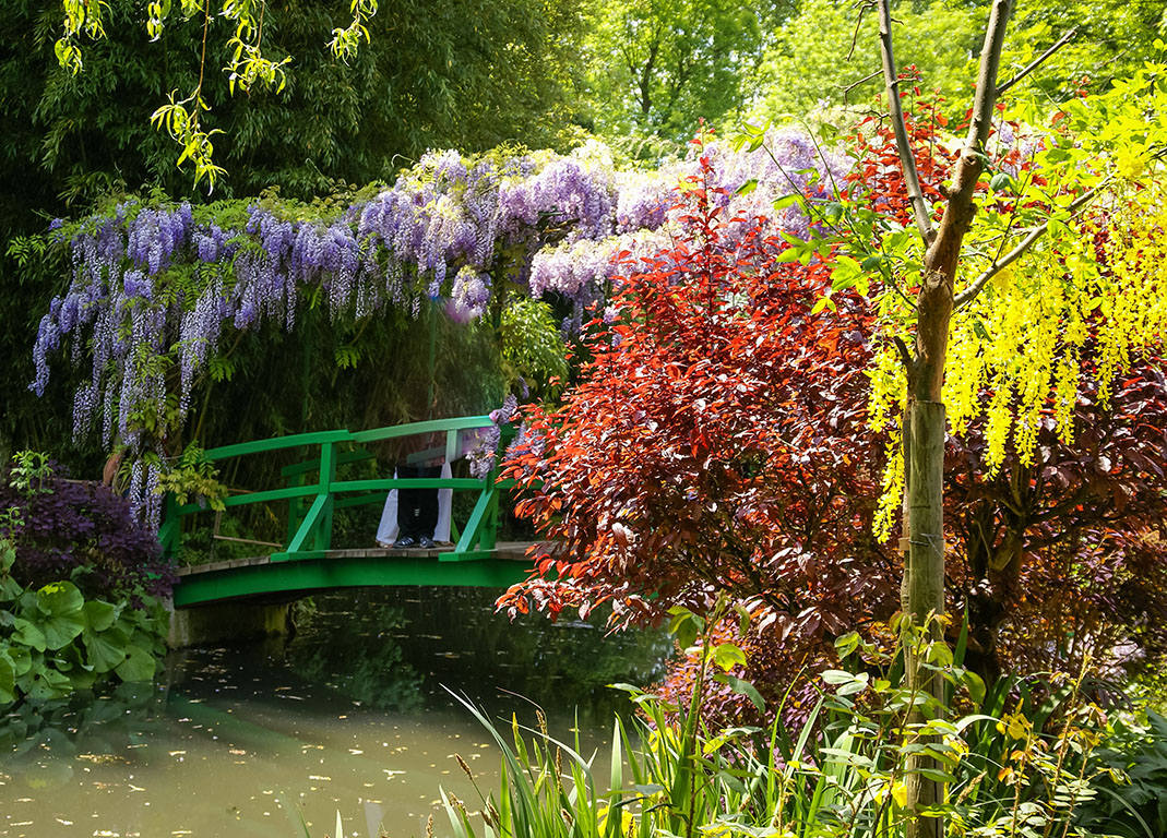 Private Giverny tour