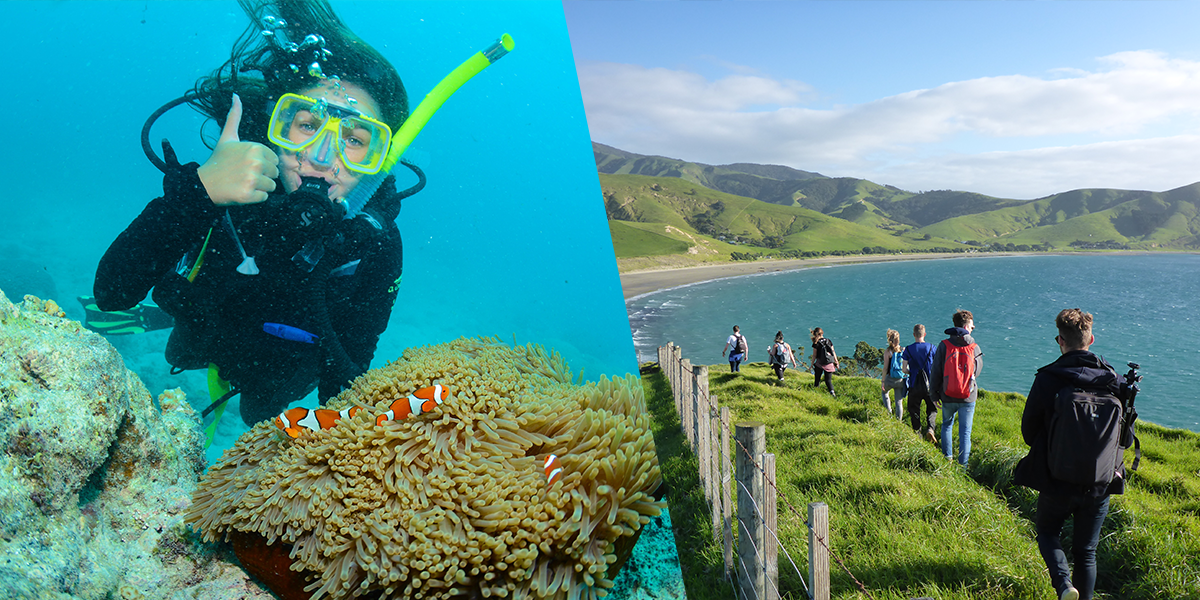 East Coast Explorer 6 Week + New Zealand Tour COMBO