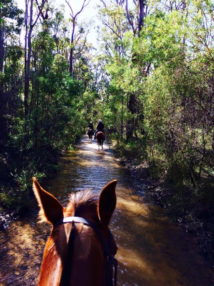 Bushmans Ride