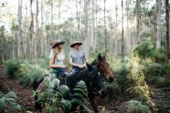 Boranup Forest Ride
