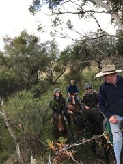 Forest Exploration Trek