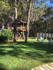 Treehouse Picnic Ride
