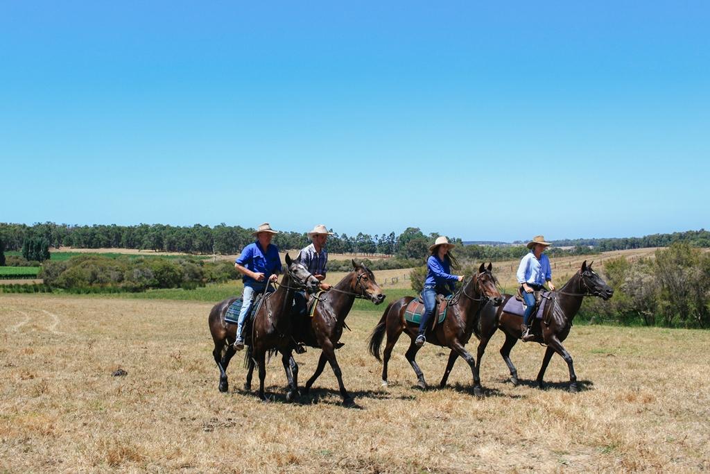 The Long Paddock Ride