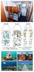 King Single Bunk Cabin on the Main Deck - Cabin 21/27 - Abrolhos Islands 5 Day Tour - Boat out & back