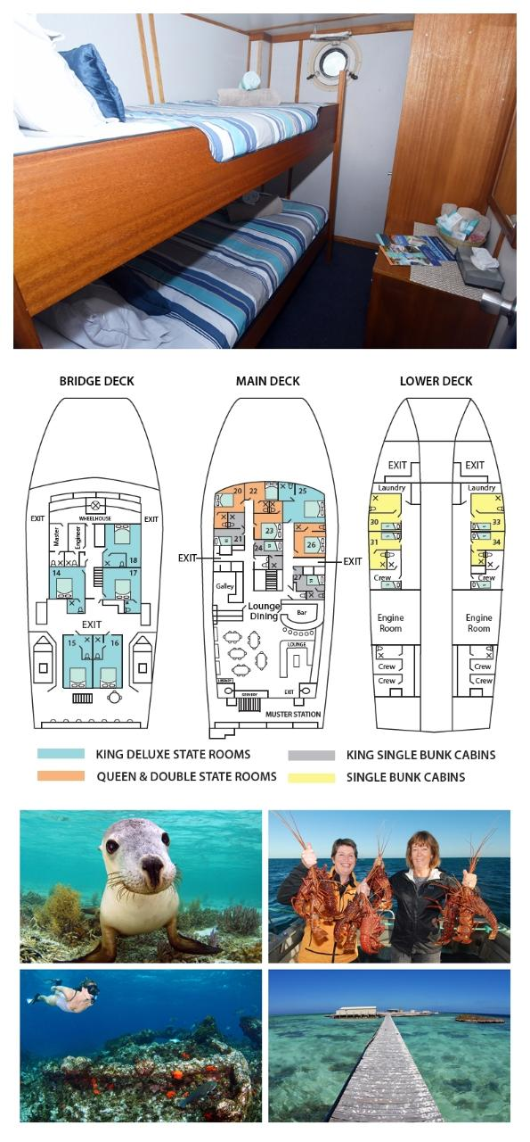 Single Bunk Cabin on the Lower Deck - Solo Use - Abrolhos Islands 5 Day Tour - Boat out & back