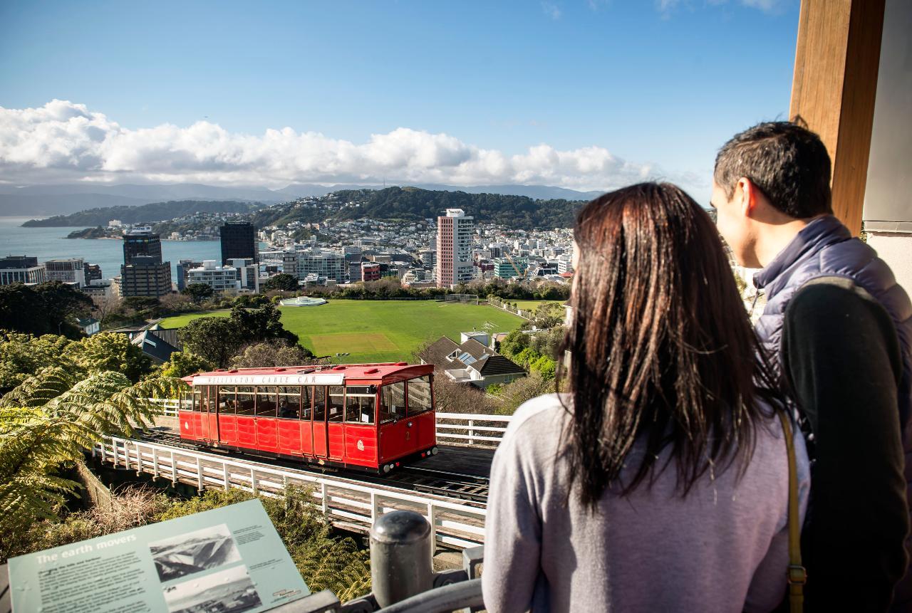 Wellington City Sights and Coastline Tour