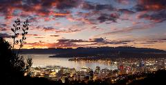 Wellington Twilight Tour