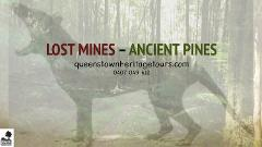 Lost Mines - Ancient Pines