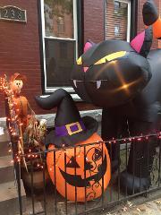 2H - Visite spéciale Halloween avec atelier décoration de citrouilles !