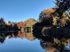 2H30 - A la découverte des secrets de Central Park