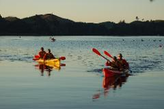 Evening Glow Worm Kayak Tour