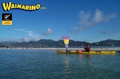 Tauranga Sea Kayak Tour