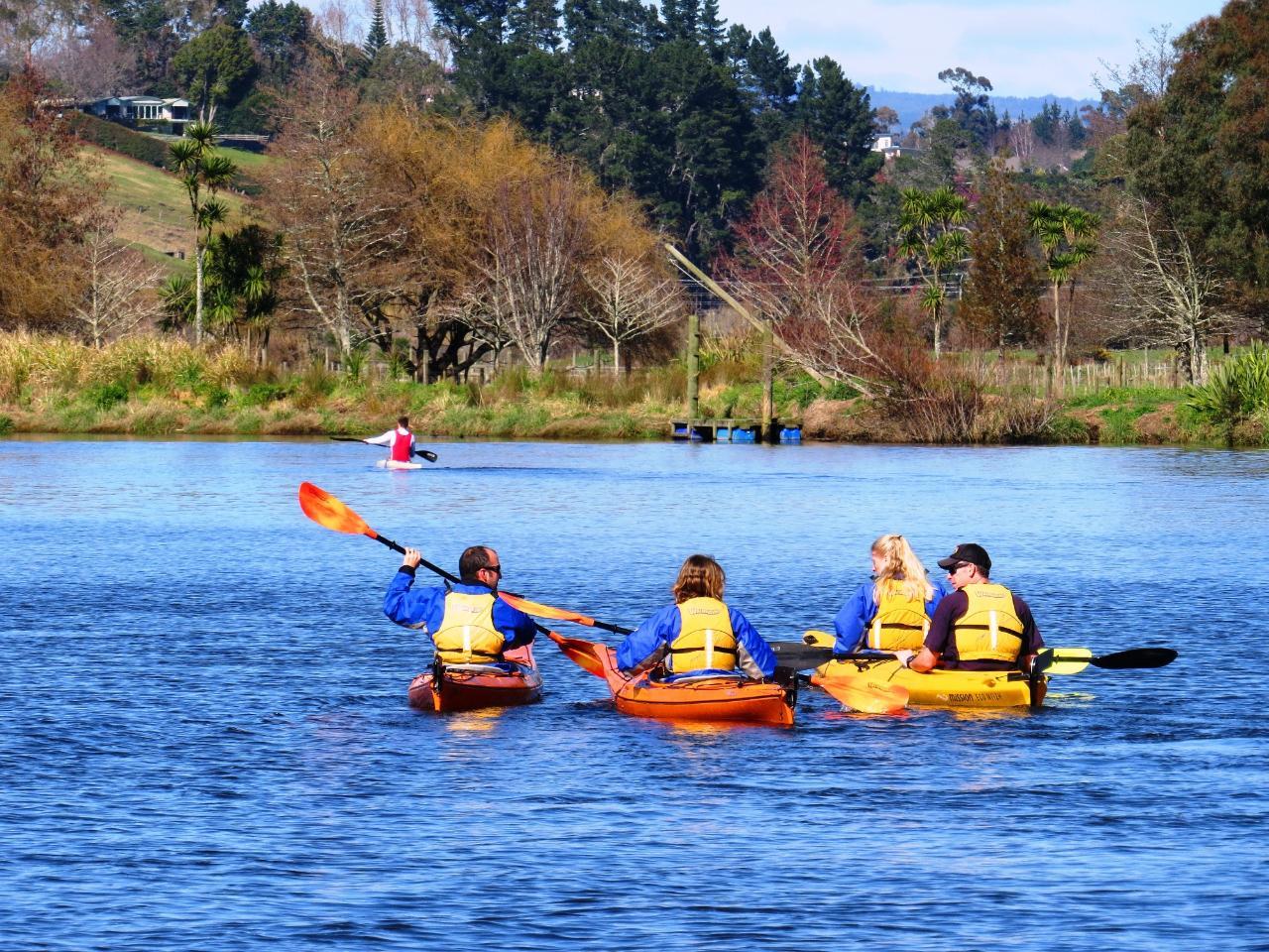 SHORE EXCURSION: Wairoa River Kayak Tour - Guided