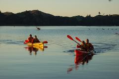 Lake Rotoiti Starlight Kayaking Experience