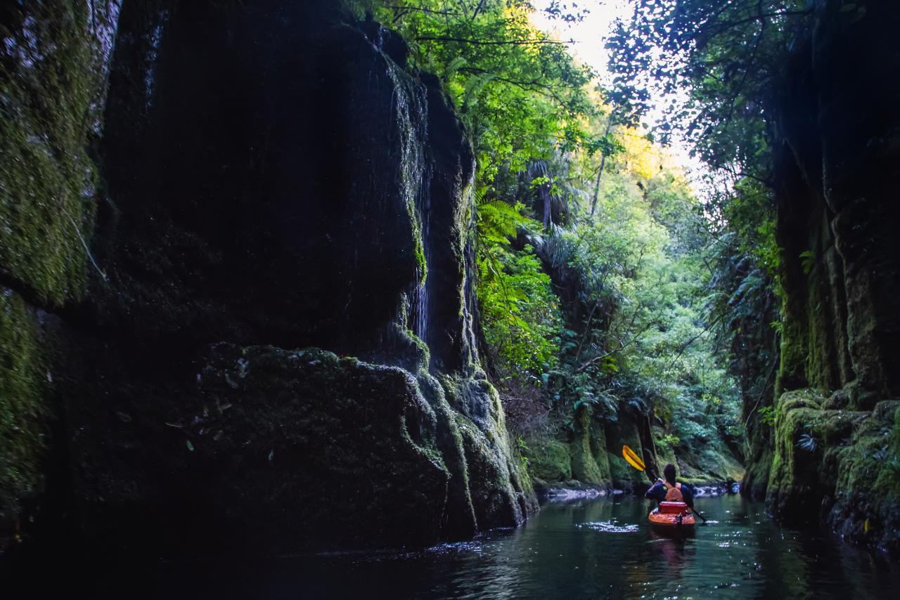 Scenic Lake Mclaren Kayak Tour