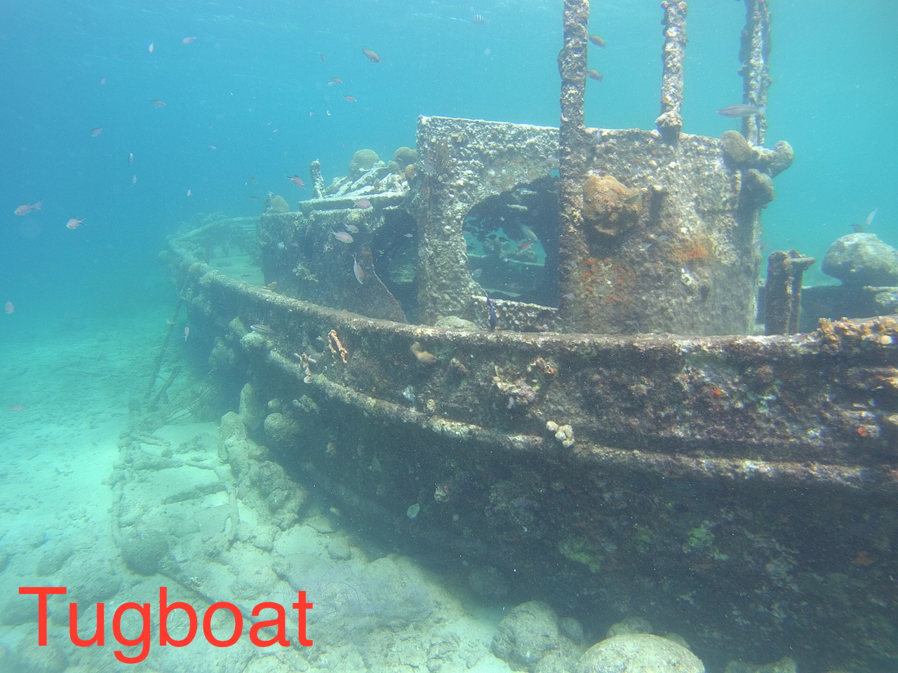 Wreck Dive Safari Tour to Tugboat and Superior Producer