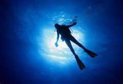 Deep Diver - 4 dives