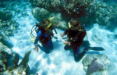 The Discover Scuba Diving Xperience