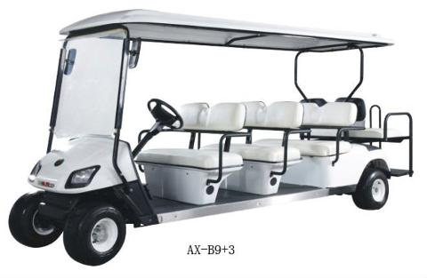 AMI Street Legal 8 Passenger Golf Cart - Daily Rental