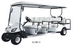 AMI Street Legal 8 Passenger Golf Cart - Daily Rental